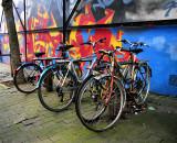 Suburban bikes are tough