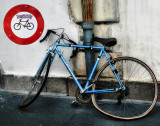 The bicycle  which should have paid more attention to street signs...