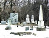 Pleasant Hill Cemetery Illinois