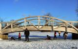 Bridge Encounter of the Underneath Kind