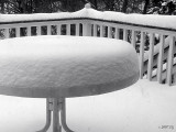 Snow Gauge