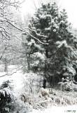 Came a Heavy Snow