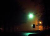 Foggy Night Watch