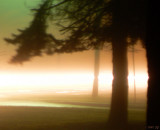 Empty Street on a Foggy Night: Car Passing