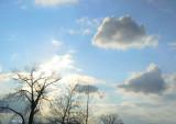 Clouds' Evening Commute