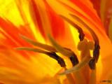 Inner Flames