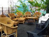 Garden Party Where Nobody Came