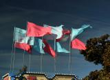 Carny Flags