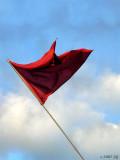 Raising a Red Flag