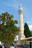 Turkey-Hatay-View Prayer Tower and Magnolia