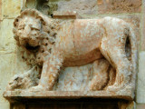 The Assisi Lion - number 1