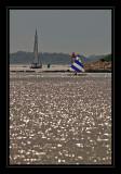 Sailing the harbor