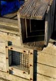 Les cages à anguilles, La Pocatière
