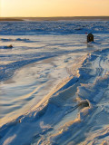 seule sur la glace