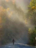 La poussière de la route