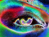 l'oeil au beurre arc-en-ciel