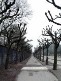 The road between the two cemetaries