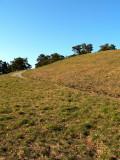 Hill III