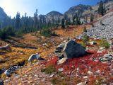 Fall colors along PCT near Man Eaten Pass