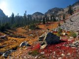 Fall colors along PCT near Man Eaten Pass, and Kelly