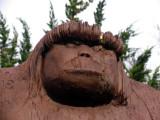 Bigfoot's face