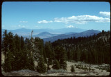 Sheep Camp Meadows