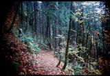 Eagle Creek Trail 1979