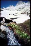 Trinity Alps near Mt Hilton