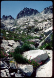 Trinity Alps High Route and Grey Rock Pass