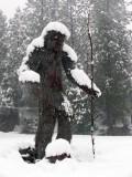 Bigfoot statue in blizzard.