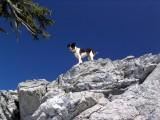Kelly on Marble Mountain