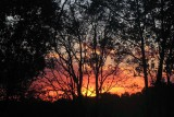Witch WoodsSunset Fire