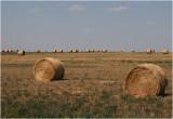 Alberta Ranch Land