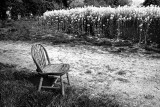 A Seat in the Country