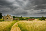 Cotswold Countryside 2