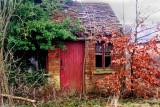 Autumnal Ruin