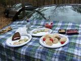 Anne Fitzpatrick 's Gormet Tailgate Party1130265.JPG