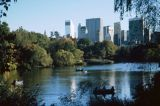 Central Park in the Fall, Manhattan