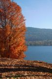 Fall Colours by Lake George