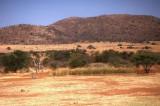 Savanna at Pilanesberg