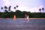 Windsurfers in Tahiti