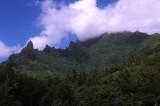 Green Peaks on Moorea
