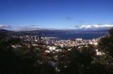 Wellington seen from Brookyln