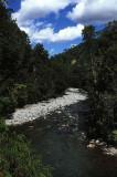 Stream in beech forest, Heaphy Track