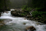 Raging river in the Vysoke Tatry