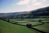 Swaledale in Spring time