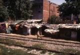 Shanty Dwellings in Delhi