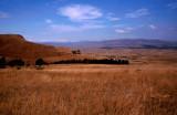 Battlegrounds of Isandlhwana, Kwazulu Natal