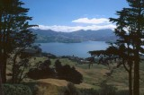 Otago Harbour from Larnach Castle