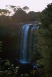 Rainbow Falls near Keri Keri